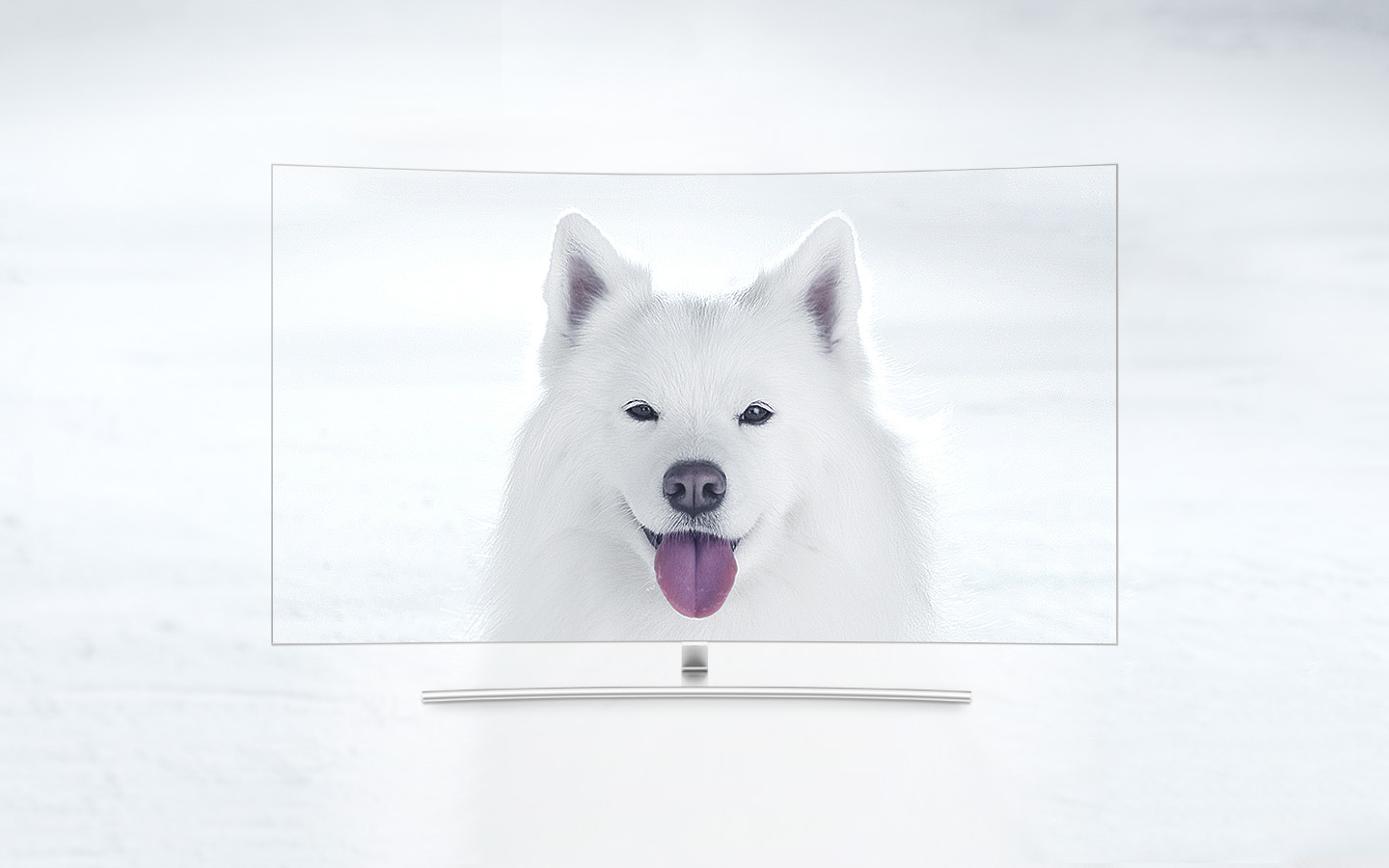 QLED TV Curved has placed directly with front face and on its screen shows an white puppy in a snowfield. The closer we go to 1500 nits, the more clearly we can see the puppy's hair which couldn't be distinguished from the snow at first.
